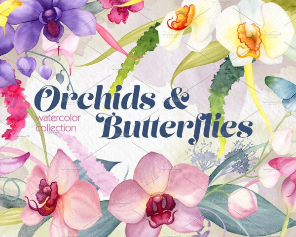 watercolor orchid flowers and butterflies